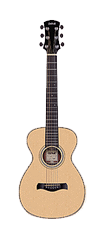Parlor Acoustic Body Style