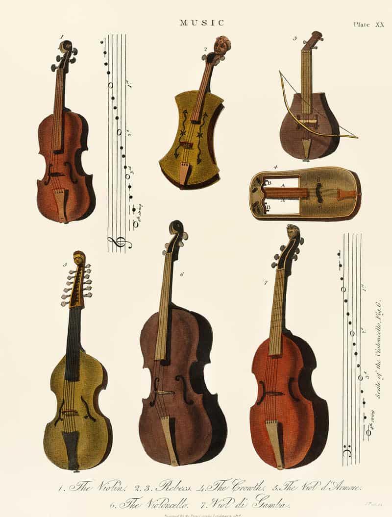 Older stringed instruments