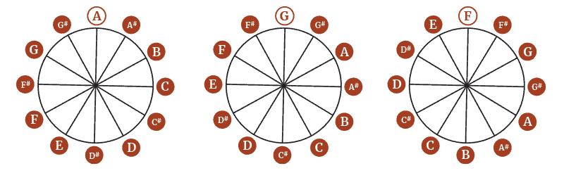 Chromatic Scale - Circular