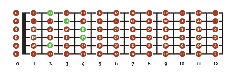 Am Barre chorc shape - Standard Tuning