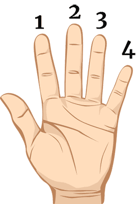 Fret Hand Numbers